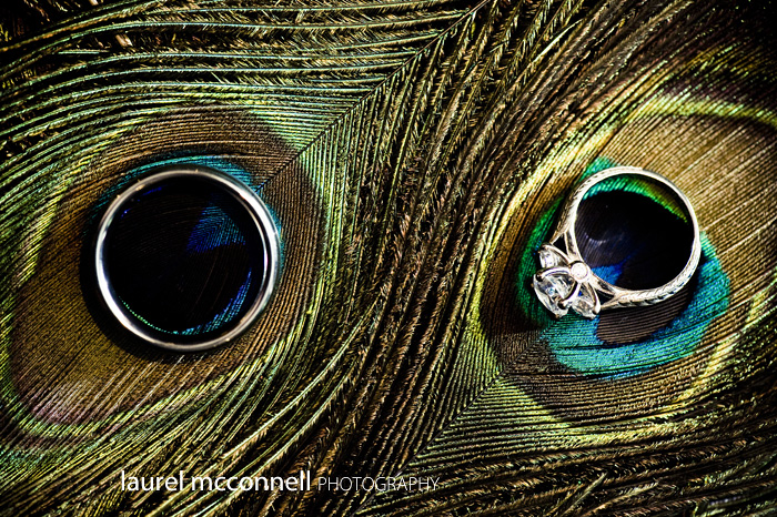 ring shot on peacock feather