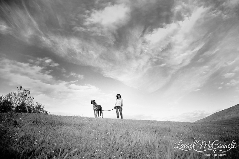 black and white photography of great dane on hill at gasworks park