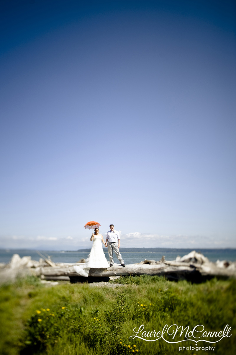 Spectacular wedding portrait of lesbian couple with parasol on driftwood log.