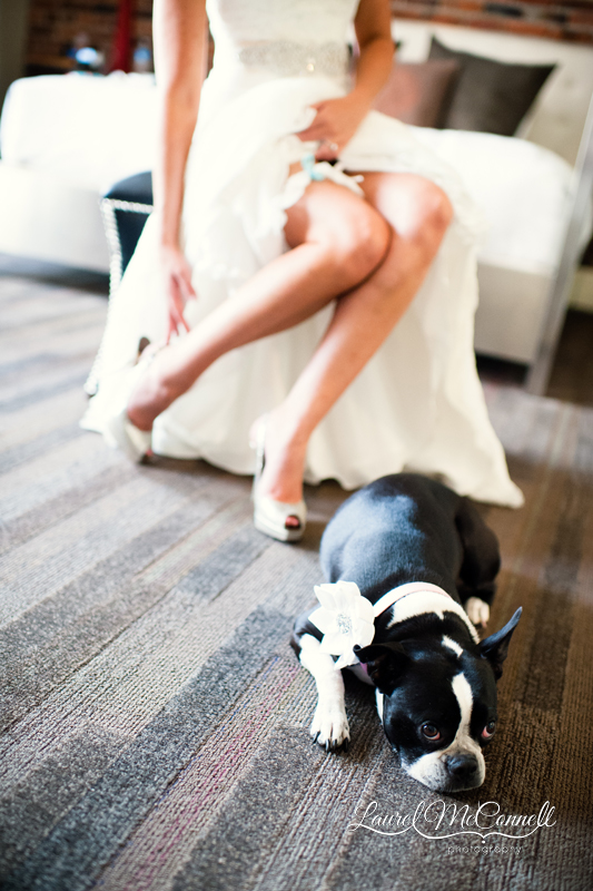 Dog pouts while bride gets ready at Seattle's gorgeous Alexis Hotel.