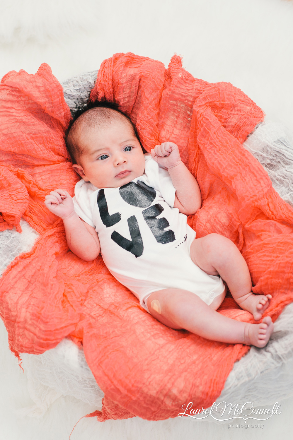 Fun newborn portrait taken during family photography session.