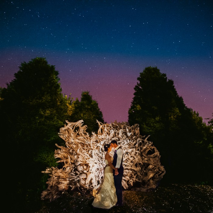 weddings no. 1