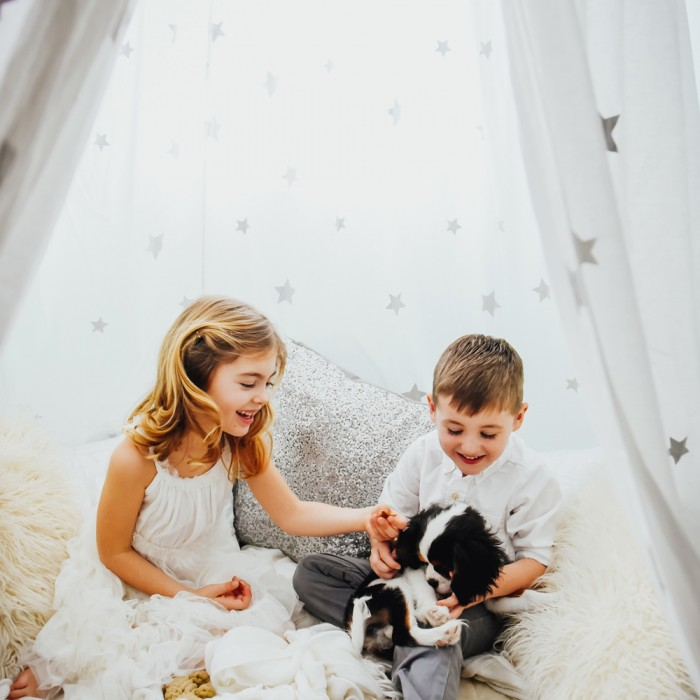 Make-Believe Shoot Under a Canopy of Stars... With a Puppy!